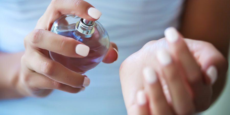 Blog Perfume (1.10)